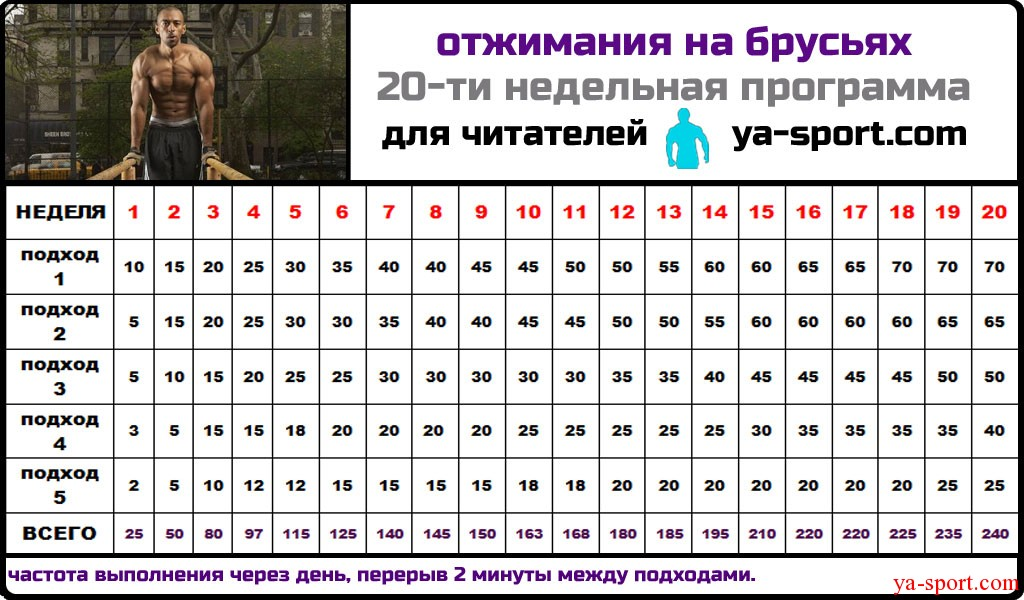 программа тренировок для сжигания жира для девушек